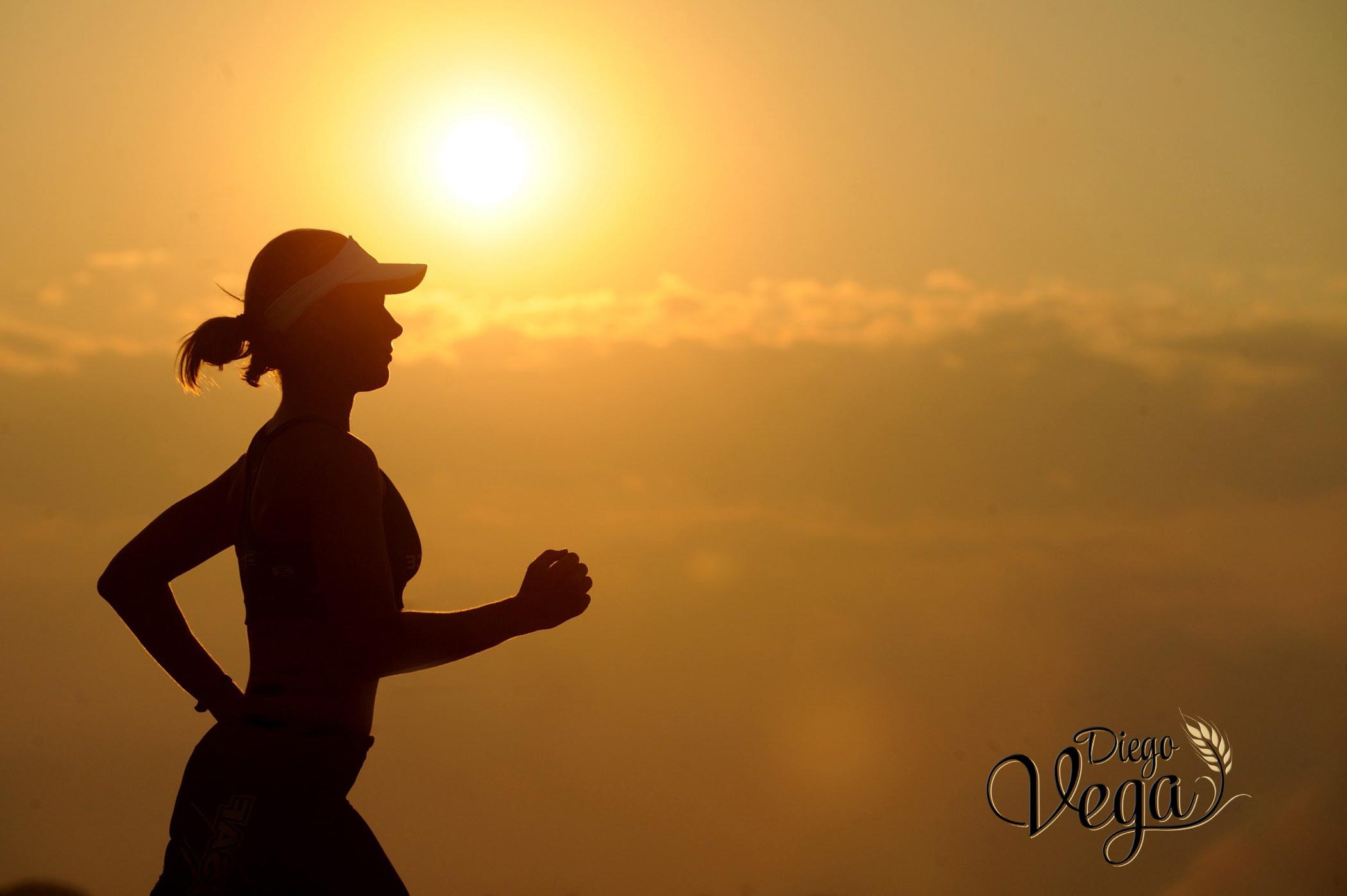 Beneficios del pan gourmet y los picos de pan en la dieta de un deportista